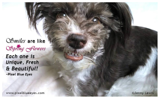 """Pixel quote """"Smiles are like spring flowers"""" poster showing Pixel smiling"""