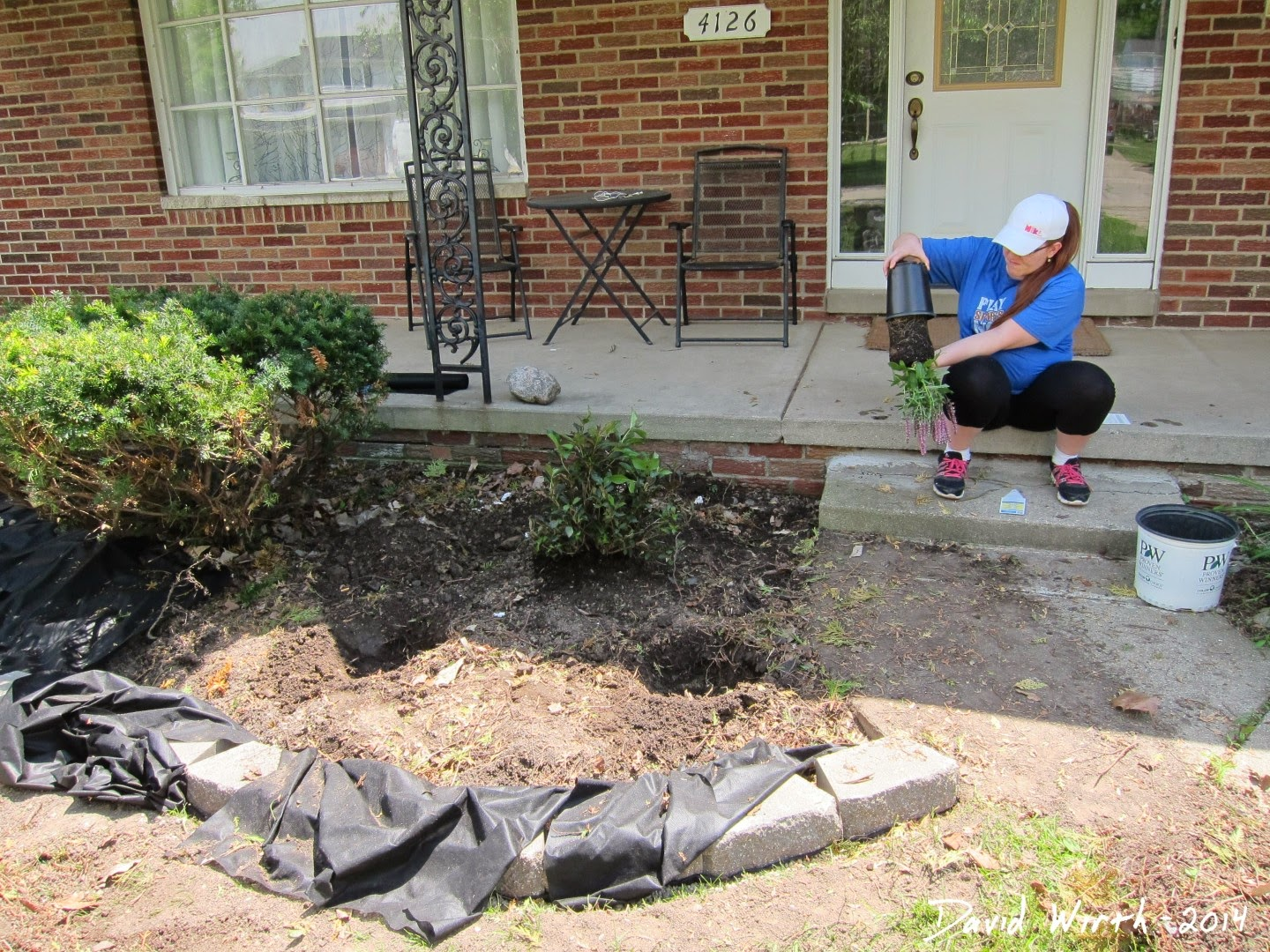 fix the front yard problems