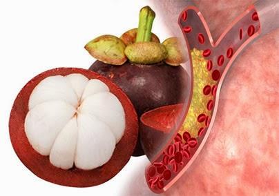 khasiat manfaat buah manggis