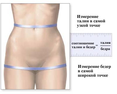как измерить талию у женщин фото