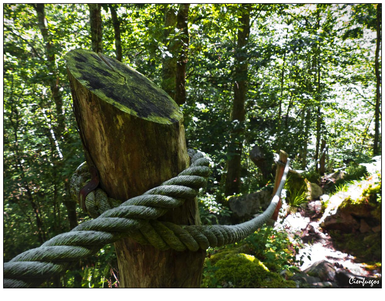 Caleyando con cienfuegos cascada de cioyo for Cascada par