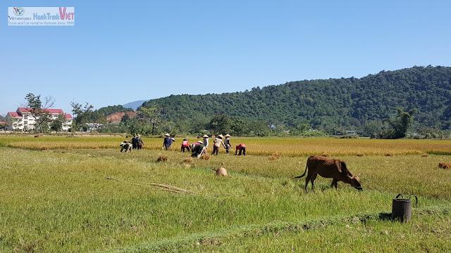 Tham quan làng M'nong trên hồ Lak