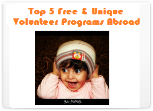 Top 5 Free and Unique Volunteer Programs