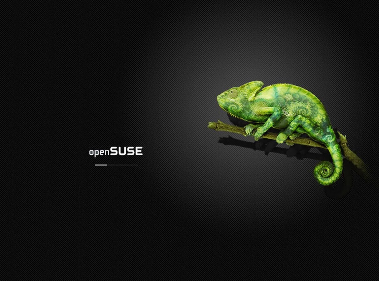 openSUSE merchandising new collection  openSUSE Lizards