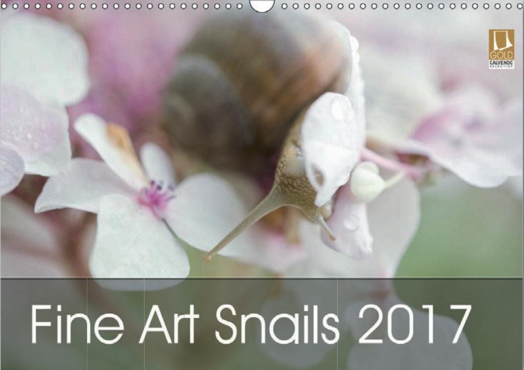 My Fine Art Snail 2017 Calendar