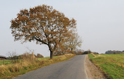 country road, Mols, November