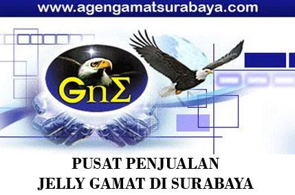 Agen Resmi Jual Jelly Gamat Gold-G di Surabaya Sejak 2010