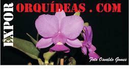 Blogger relacionados a orquideas.