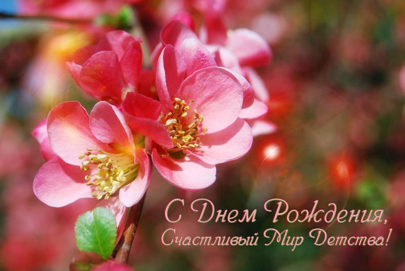 http://happydeti.blogspot.ru/2015/04/ura-ja-rodilsa.html