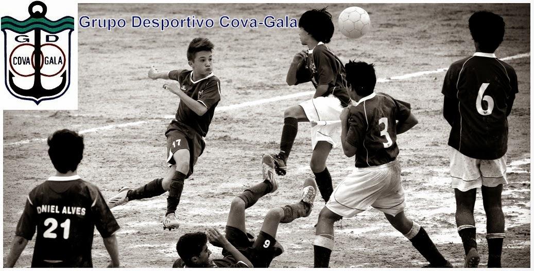 Grupo Desportivo Cova-Gala