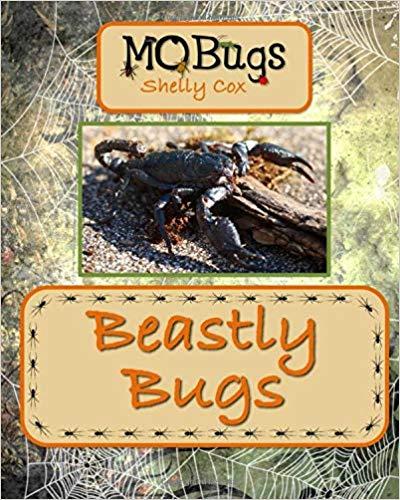 Beastly Bugs