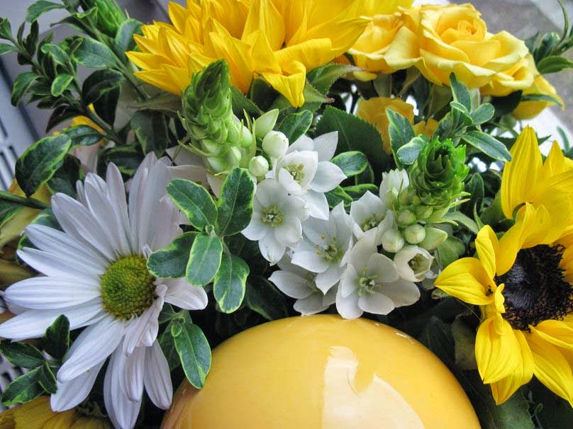 bouquet-of-yellow-and-white-flowers