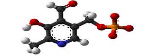 Vitamin B6 (Piridoksin), Sumber, Fungsi, Manfaat dan Efek samping