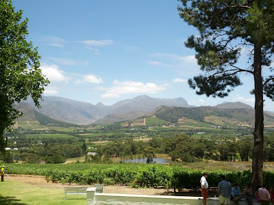 south africa winelands franschhoek stellenbosch