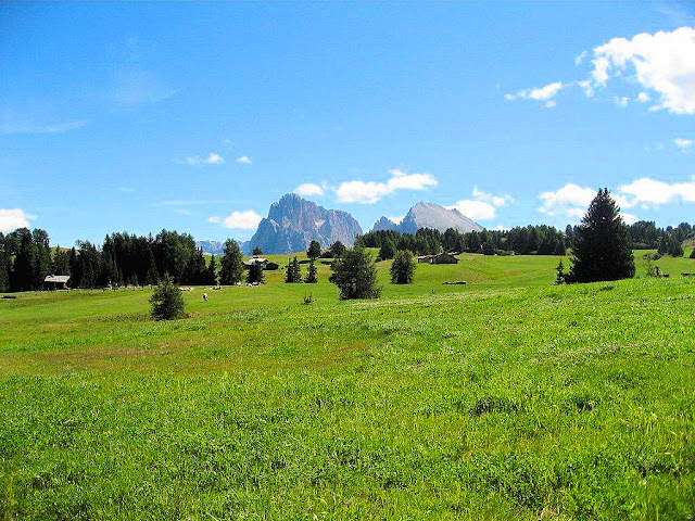 Alpe di Siusi—the highest Alpine meadow in ALL of Europe.