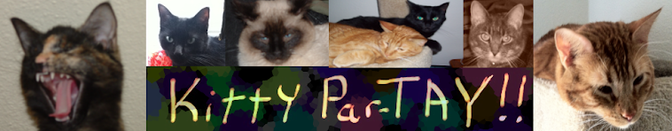 Kitty Par-TAY
