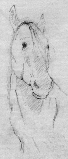 Horse sketch, pencil