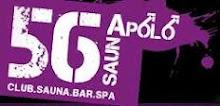 SAUNAPOLO56