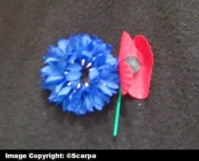 The history girls le bleuet de france the remembrance poppy oh i said ive never seen that before mightylinksfo