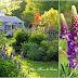 Garden Mosaic Monday