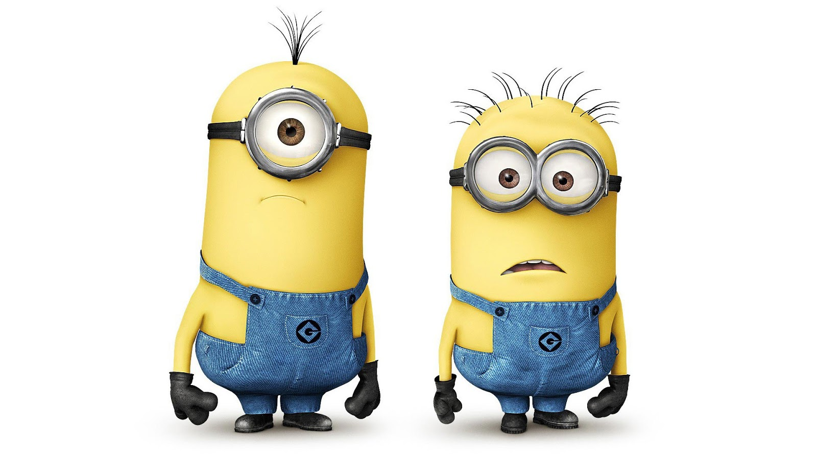 think now everyone is Crazy with these little Cute Minions...