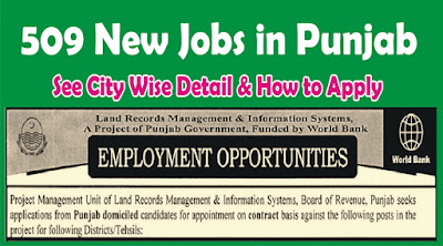 Jobs in Land Record Management & Information System Punjab