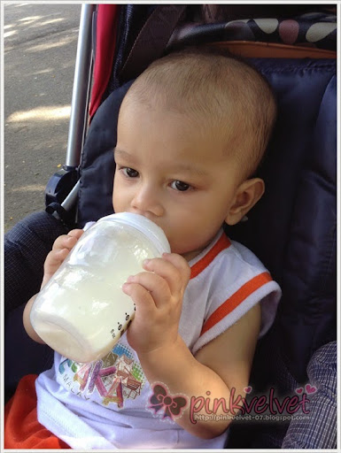 Zoo, Taiping, Stroller, Tommy, Tippee