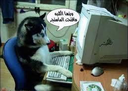 اجمل الصور المضحكة الجزائرية images+%286%29.jpg