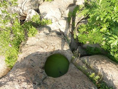 гранитный колодец в скале залит водой с плавающей ряской