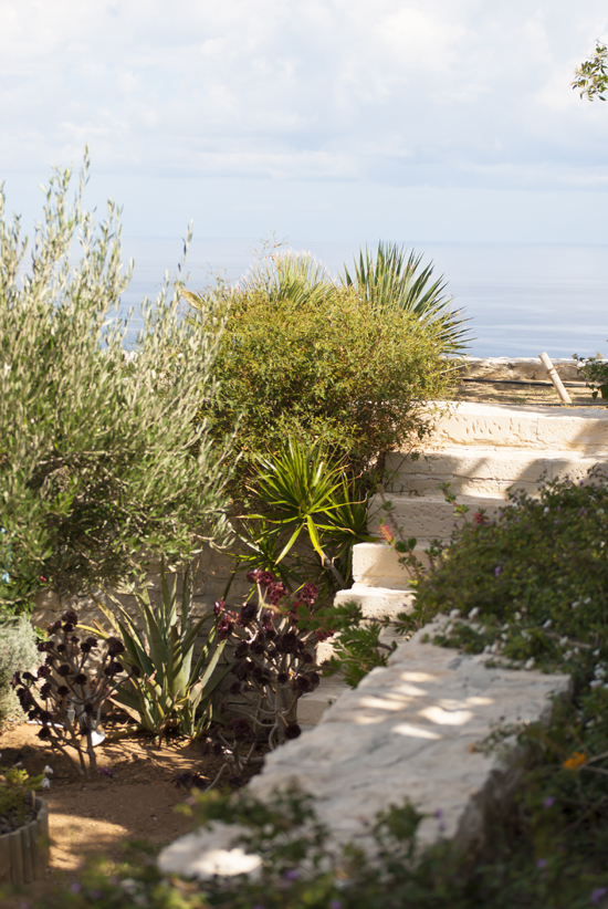 A mediterranean garden in a summer house in Heraklion, Crete ©Eleni Psyllaki