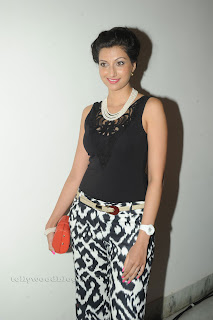 Hamsa Nandini pos at attarintiki daredi audio 027.jpg