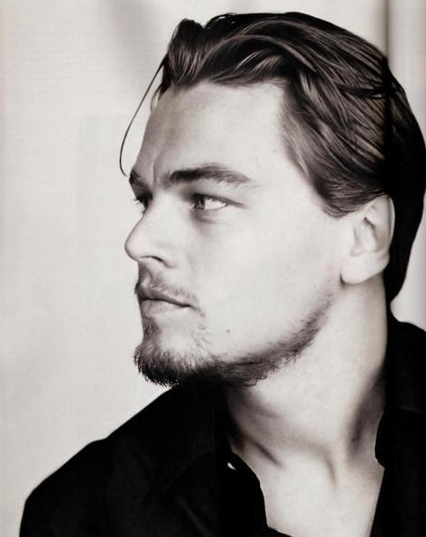 Leonardo DiCaprio Hair... Leonardo Dicaprio