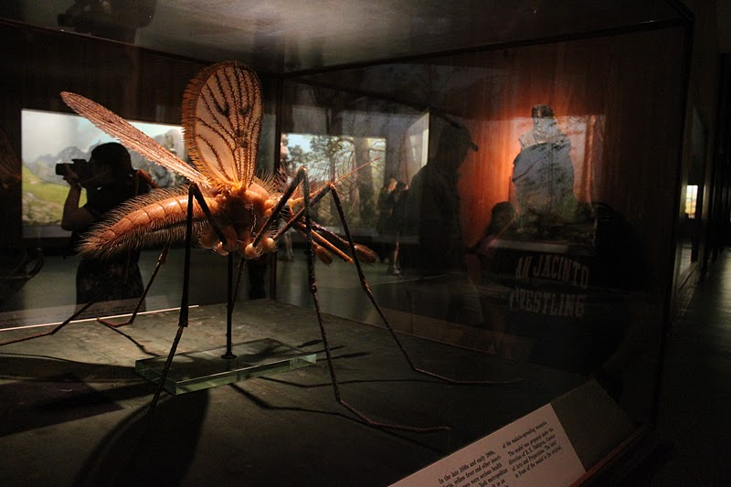 Natural History Museum Mosquito