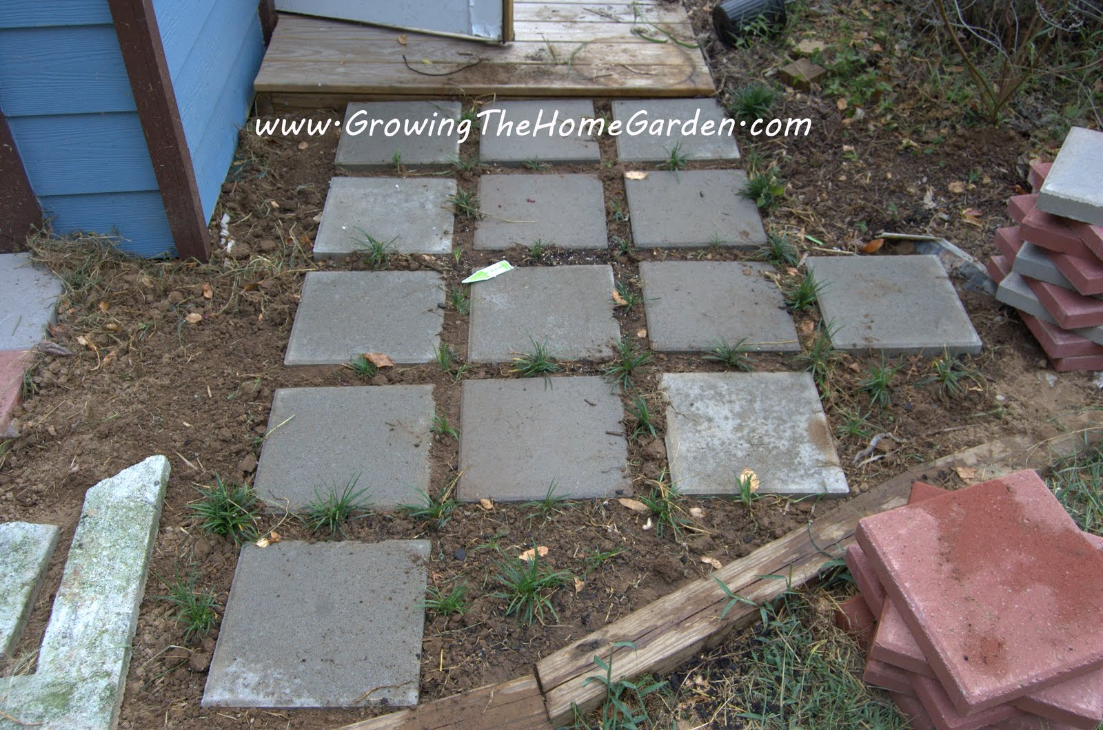 How to plant ground cover between pavers - Those First Four Pots Were Divided Into About 40 Smaller Plants Not A Bad Bargain For 2 A Pot Eventually The Groundcover Will Block Out Any Weeds That