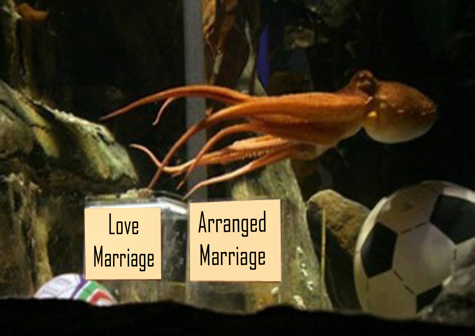 dating vs arranged marriage Is online dating the same as arranged marriage dating 150 years he enlisted his parents — who'd had an arranged marriage — to help him find the love.