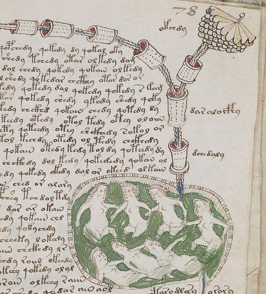 Manuscrito Voynich (mujeres en baño)