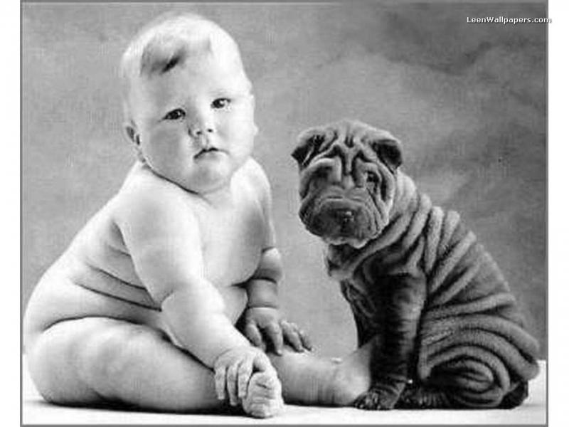 Bebês Gordinhos viram Adultos Pegadores