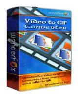 WonderFox Video to GIF Converter v1.1 Full Serial 1