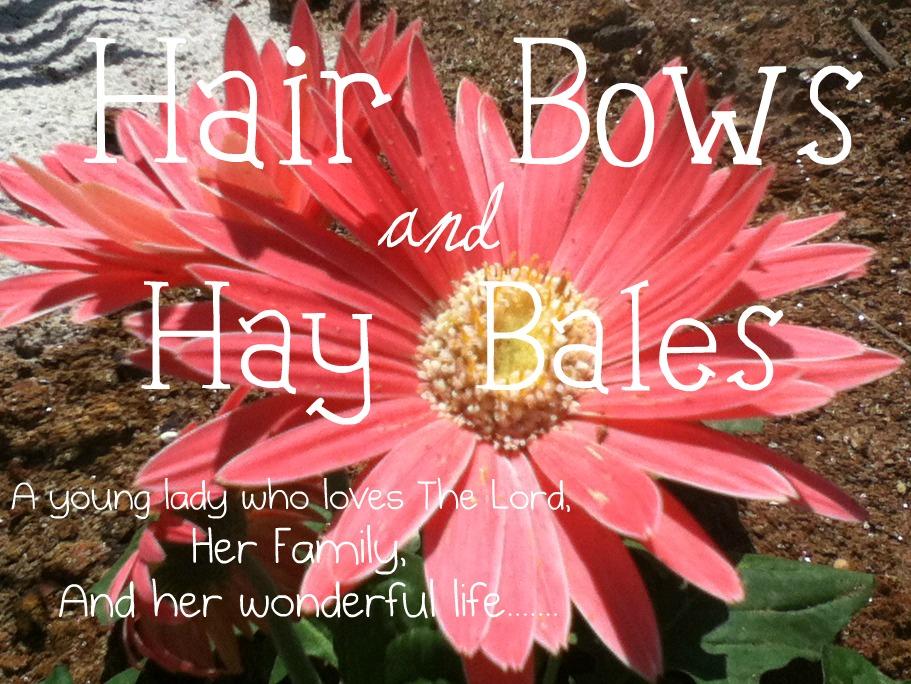 Hair Bows and Hay Bales