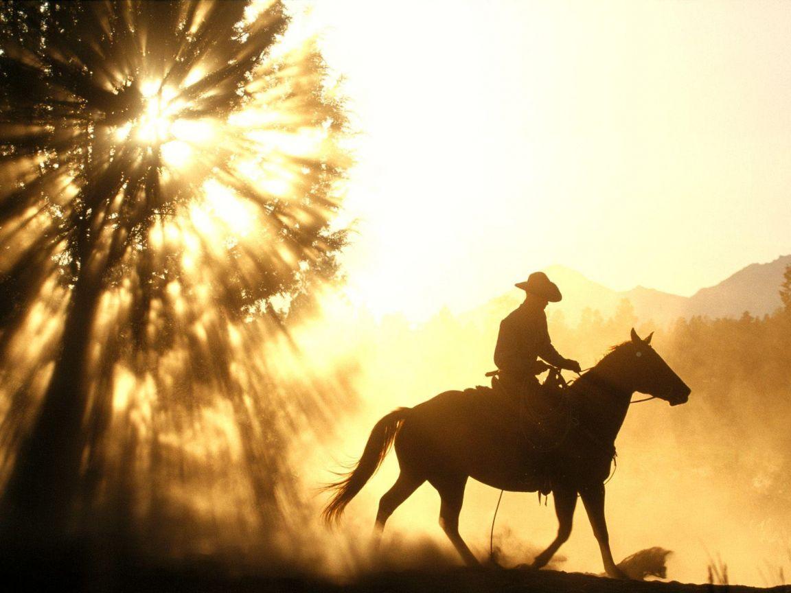 Western cowboys wallpaper - photo#6