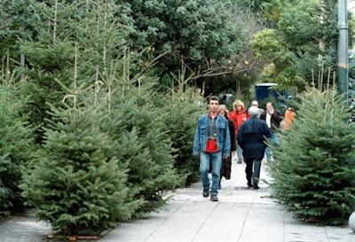 Μελέτη του Χαροκοπείου Πανεπιστημίου έδειξε ότι είναι φιλικότερο στο περιβάλλον