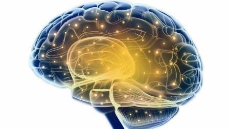 8 maneras de entrenar tu cerebro para aprender más rápido y recordar mejor