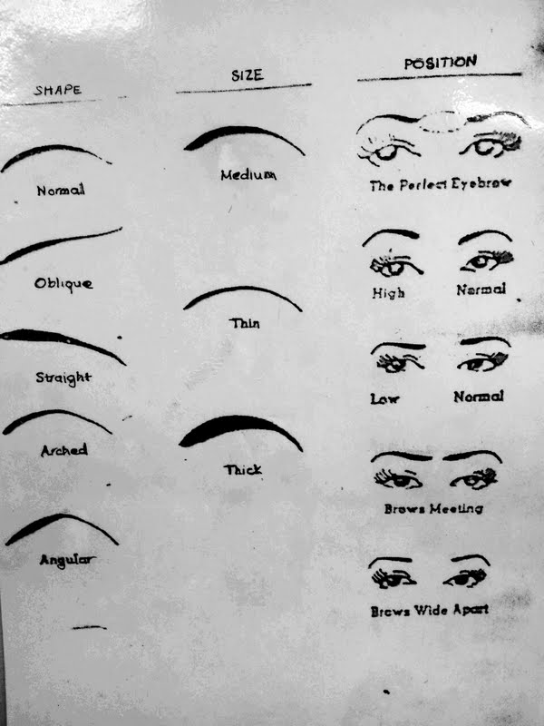 Thick Eyebrow Shapes Chart How To Determine Your ...