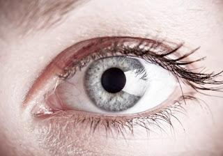Superficie ocular y córnea