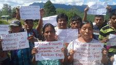 En apoyo a Bernardo Caal:
