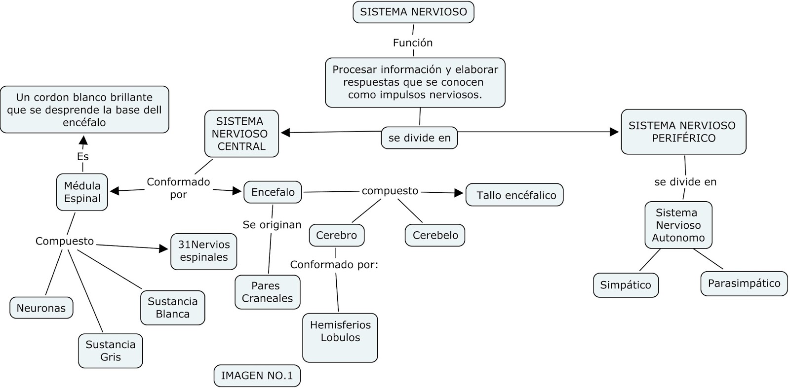 download Anthropologists and Indians in the New South (Contemporary