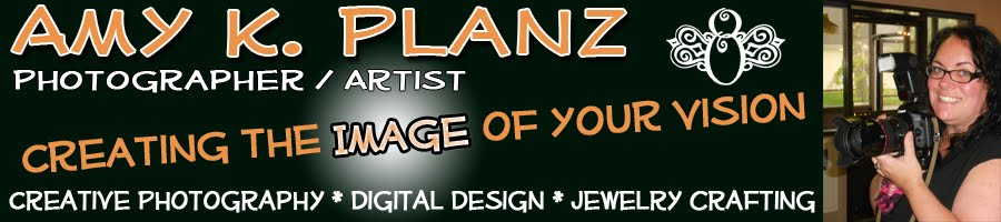 Amy K. Planz: Artist/Photographer aka: Creative Fly Designz
