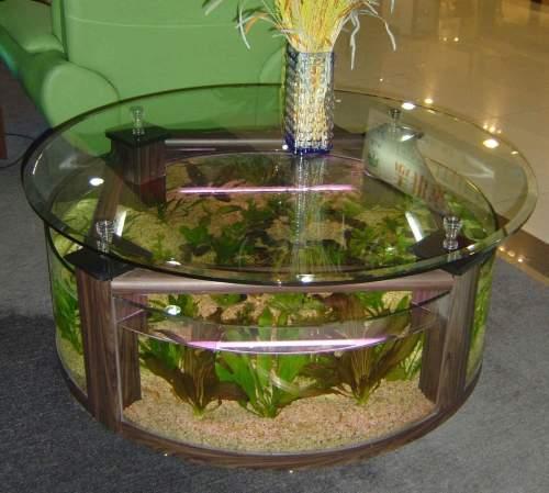 Aqua Fanatic: Unique aquariums for home decoration