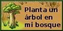 Bosque Lunático
