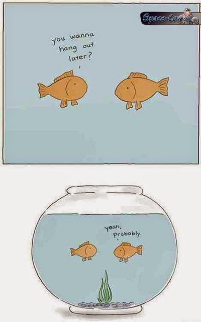 funny comics fish picture